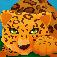 Leopard Run 3D